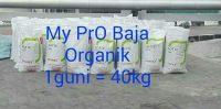 FB_IMG_1512022085255.jpg